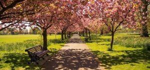 Londen Hyde Park
