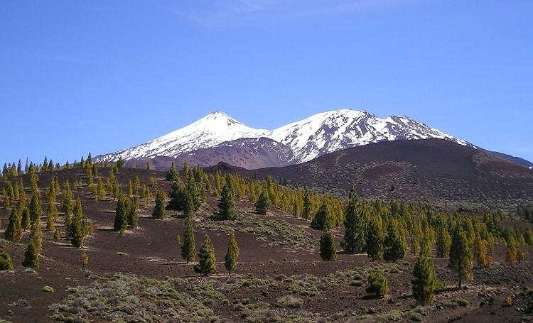 Vakantie naar Tenerife in november