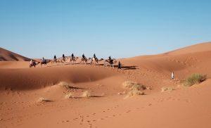 Vakantie Egypte in december