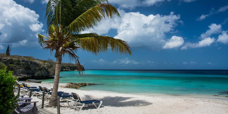 Playa d'En Bossa header
