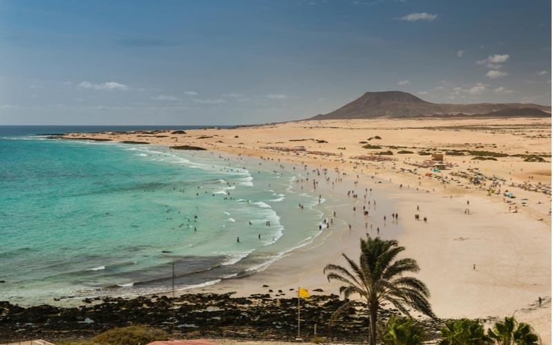 Grandes Playa strand in Corralejo