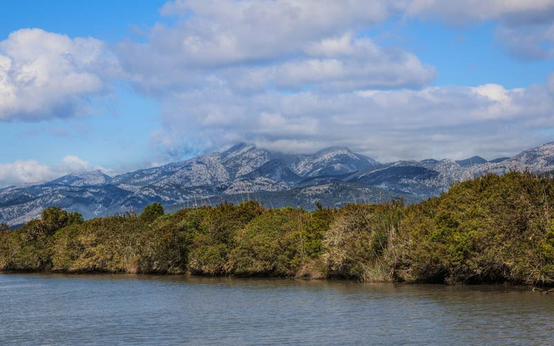 Natuurpark Parc Natural de s'albufera op Mallorca