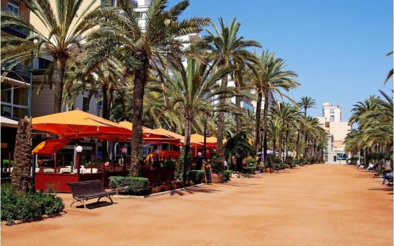 Promenade in het centrum van Lloret de Mar