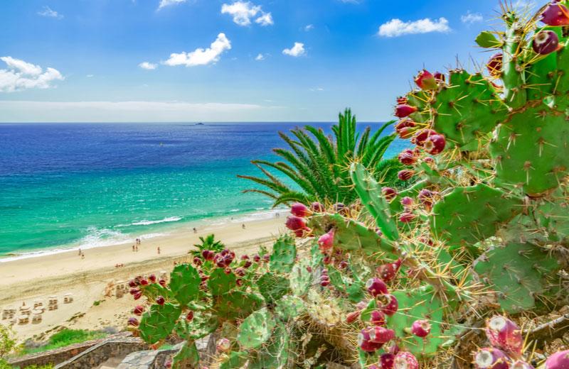 Esquinzo beach