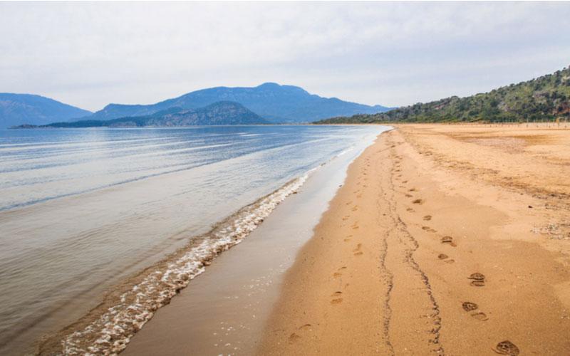 Iztuzu beach in Dalyan