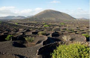 La Geria op Lanzarote